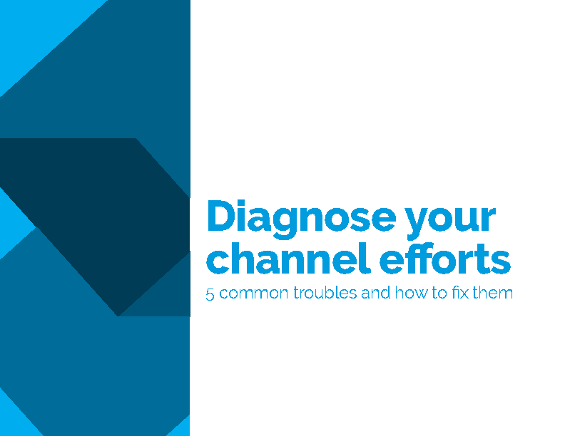 Diagnosing your channel efforts, channel management, the spur group